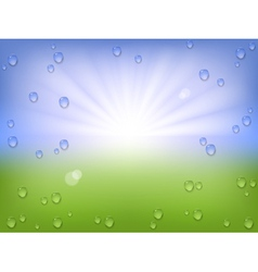 Spring water background vector