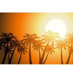 Tropical palm trees silhouette at sunrise vector