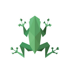 frog polygon low poly faces sharp vector image vector image