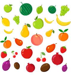 rainbow of fruits vector image