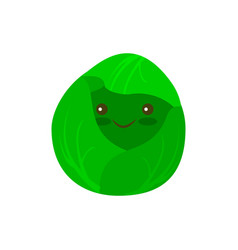 Cabbage flat icon vector