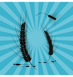 Ears of Wheat Black Silhouette on Retro Blue vector image