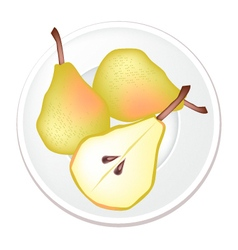 Fresh and Sweet Green Pears on White Background vector