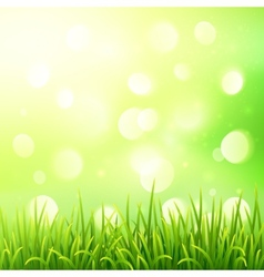 Green grass on bokeh light effect background vector image