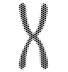 Hexagon halftone chromosome icon vector