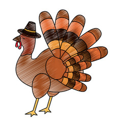 isolated turkey design vector image