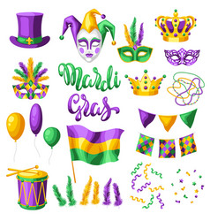 Mardi gras party set items vector
