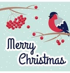 New Year and Merry Christmas Bullfinch vector image