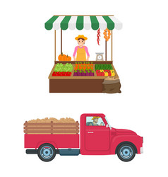 Woman selling vegetables set vector