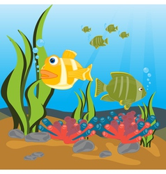 Tropical fishes seaborne vector image vector image