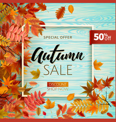 Bright banner for autumn sale vector
