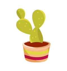 cinco de mayo potted succulent decoration vector image