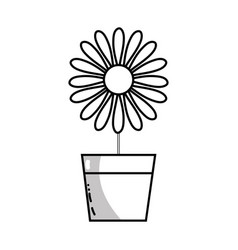 line sunflower with petals inside to flowerpot vector image