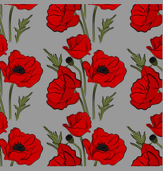 nature floral poppy pattern image red vector image
