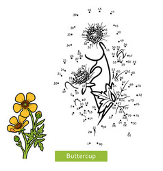 numbers game flower buttercup vector image
