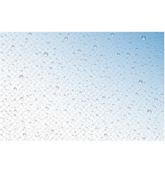 Realistic water drops condensed vector