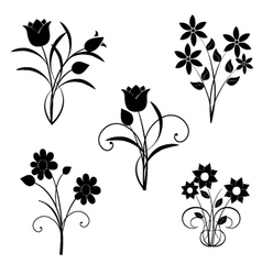 Silhouette of black flowers vector