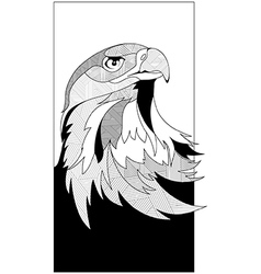 sketch eagle head vector image