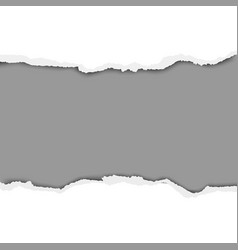 torn hole in sheet of white paper with gray vector image