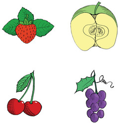 StrawberryCutting applecherriesGrapes Hand drawn vector image vector image