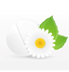 Herbal pill vector image