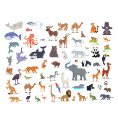 big set world animal species cartoon vector image