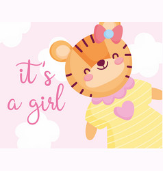 Boy or girl gender reveal its a girl cyte tiger vector