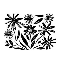 Chamomile hand drawn paint set vector