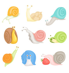 cheerful little garden snails set cute clams with vector image