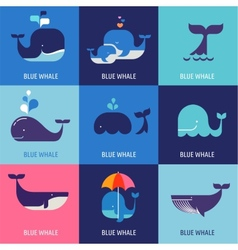 collection whale icons vector image