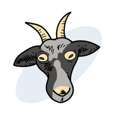 crazy goat hand drawn image vector image