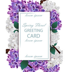Lilac flowers beautiful card spring floral vector