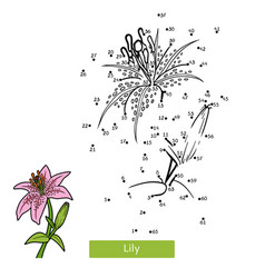 numbers game for children flower lily vector image