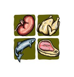raw food vector image