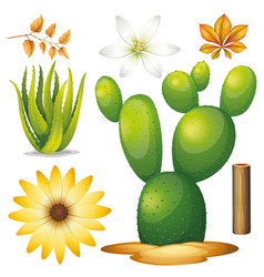 Set isolated objects theme gardening vector
