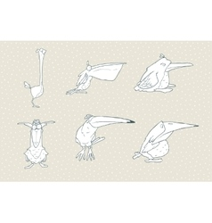 Set of cute cartoon bird isolated on white vector image