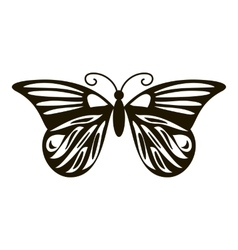 Summer butterfly icon simple style vector