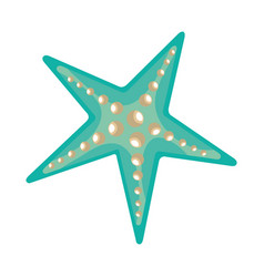 tropical starfish isolated icon vector image