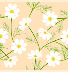 White cosmos flower on beige ivory background vector
