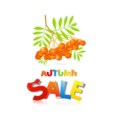 Colorful Autumn Sale Theme With Rowan Berries vector image vector image