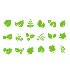 Abstract green leaves logo set ecology symbol vector