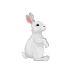 Cute rabbit standing on hind legs side view vector