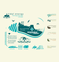 Infographics renewable source of tidal energy vector