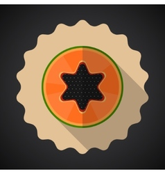 Papaya Fruit Flat Icon with long shadow vector image