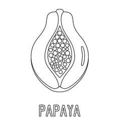 Papaya icon outline style vector