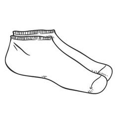 sketch - pair short socks vector image