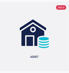 Two color asset icon from cryptocurrency economy vector