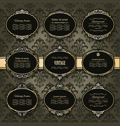 vintage golden frames and labels set on damask vector image