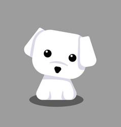 cute maltese white puppy cartoon for design vector image