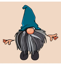 cartoon bearded gnome in the blue cap vector image